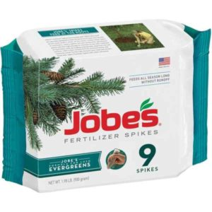 jobes fertilizer spikes for evergreens
