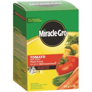 miracle gro tomato food fertilizer