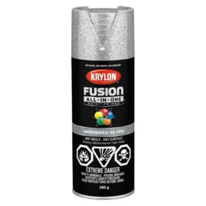krylon hammered silver spray paint